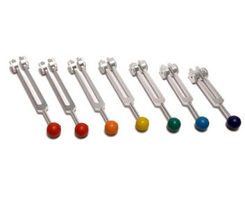 Weighted Tuning Forks with Colored Ball Identifiers Fitted.