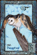 OWL Dreaming Oracle Cards