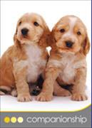 Companionship Dog Cards
